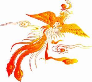 phoenix China