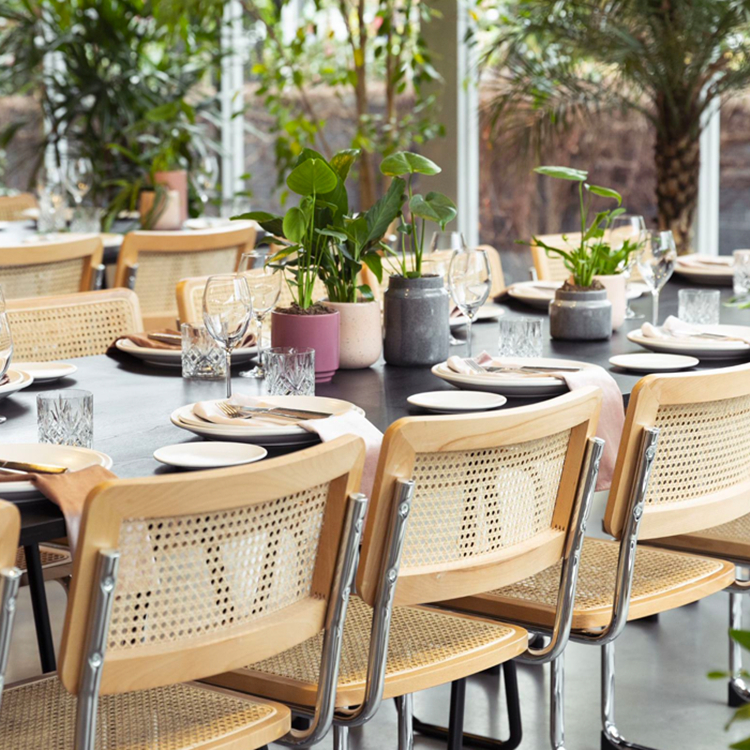 rattan seat dining chair supplier